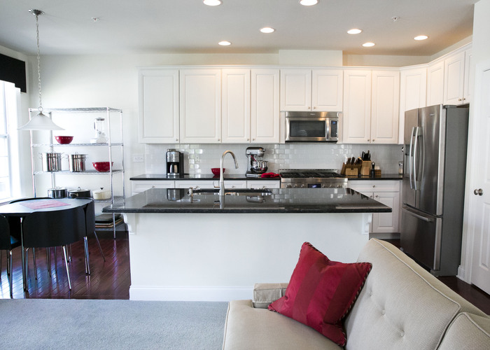 State of the Art Kitchen- Westboro Village Condo